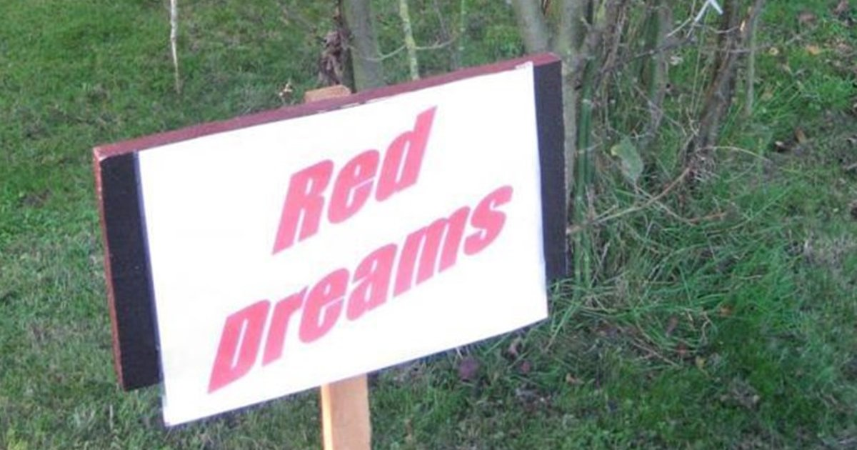 Red Dreams Guesthouse