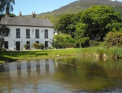 Pets-friendly hotels in Carlingford