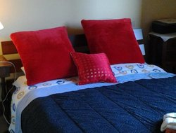 Pets-friendly hotels in Ristonchi