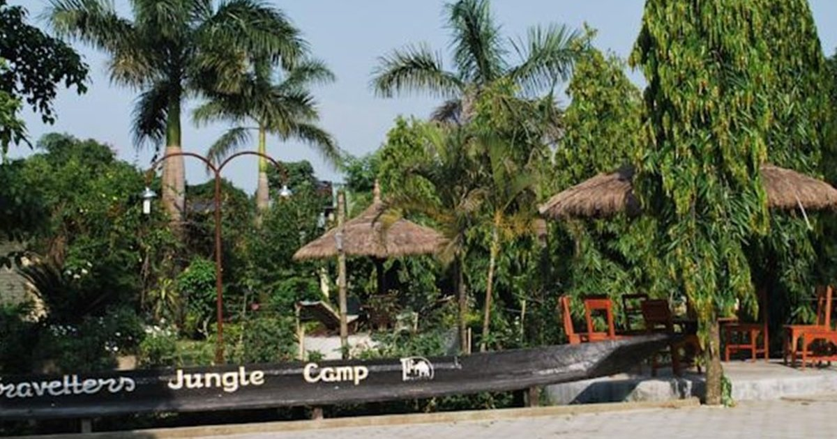 Traveller Jungle Camp