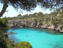 Pets-friendly hotels in Cala Pi