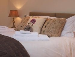 Pets-friendly hotels in United Kingdom