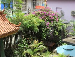 Pets-friendly hotels in Xishuangbanna