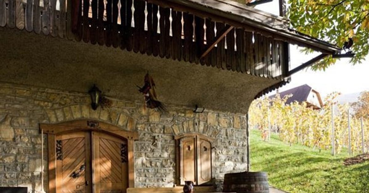 Vineyard cottage Rangus