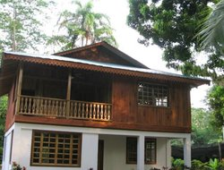 Pets-friendly hotels in Cahuita