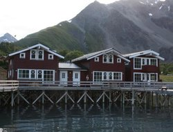 Pets-friendly hotels in Norway