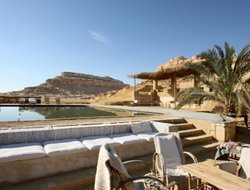 Pets-friendly hotels in Egypt