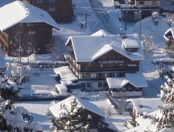 Pets-friendly hotels in Morzine
