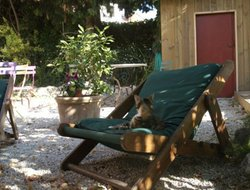 Pets-friendly hotels in Villefranche-sur-Mer