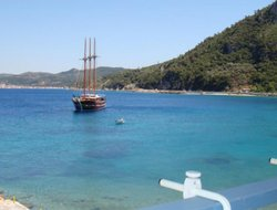 Pets-friendly hotels in Kokkari