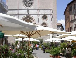 Top-6 hotels in the center of Todi
