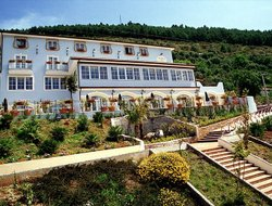 Pets-friendly hotels in Praia a Mare