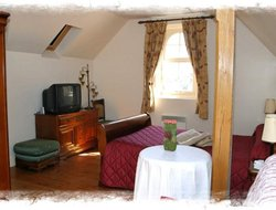 Pets-friendly hotels in Etretat