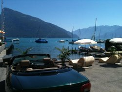 Pets-friendly hotels in Faulensee