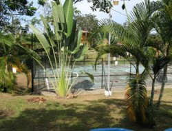 Cahuita hotels with restaurants
