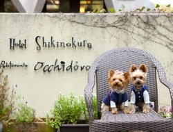 Pets-friendly hotels in Kawazu-ikadaba