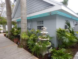 Pets-friendly hotels in Siesta Key Island