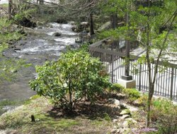Gatlinburg hotels for families with children