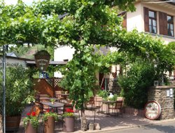 Pets-friendly hotels in Ellenz-Poltersdorf