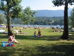 Pets-friendly hotels in Presseggersee