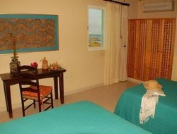 Pets-friendly hotels in Akumal
