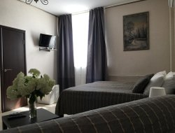 Pets-friendly hotels in Kolomna