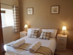 Pets-friendly hotels in Llandeilo