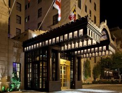 Pets-friendly hotels in Washington