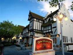 Pets-friendly hotels in Solvang