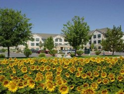 Pets-friendly hotels in Sparks
