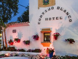 Top-8 hotels in the center of San Pedro de Alcantara