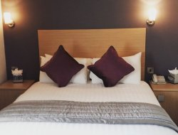 Pets-friendly hotels in Brighouse
