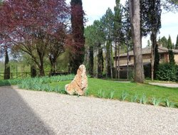 Pets-friendly hotels in San Rocco a Pilli