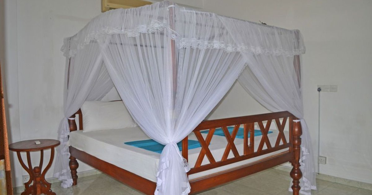 PALITHA GUEST HOUSE / HOTEL DANDELION