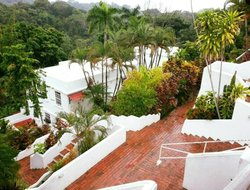 Pets-friendly hotels in Quepos