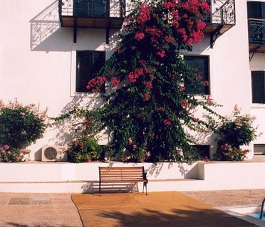 Spetses Retreat Accommodation