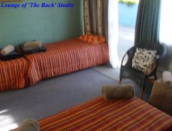 Pets-friendly hotels in Napier