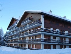 Pets-friendly hotels in Nendaz