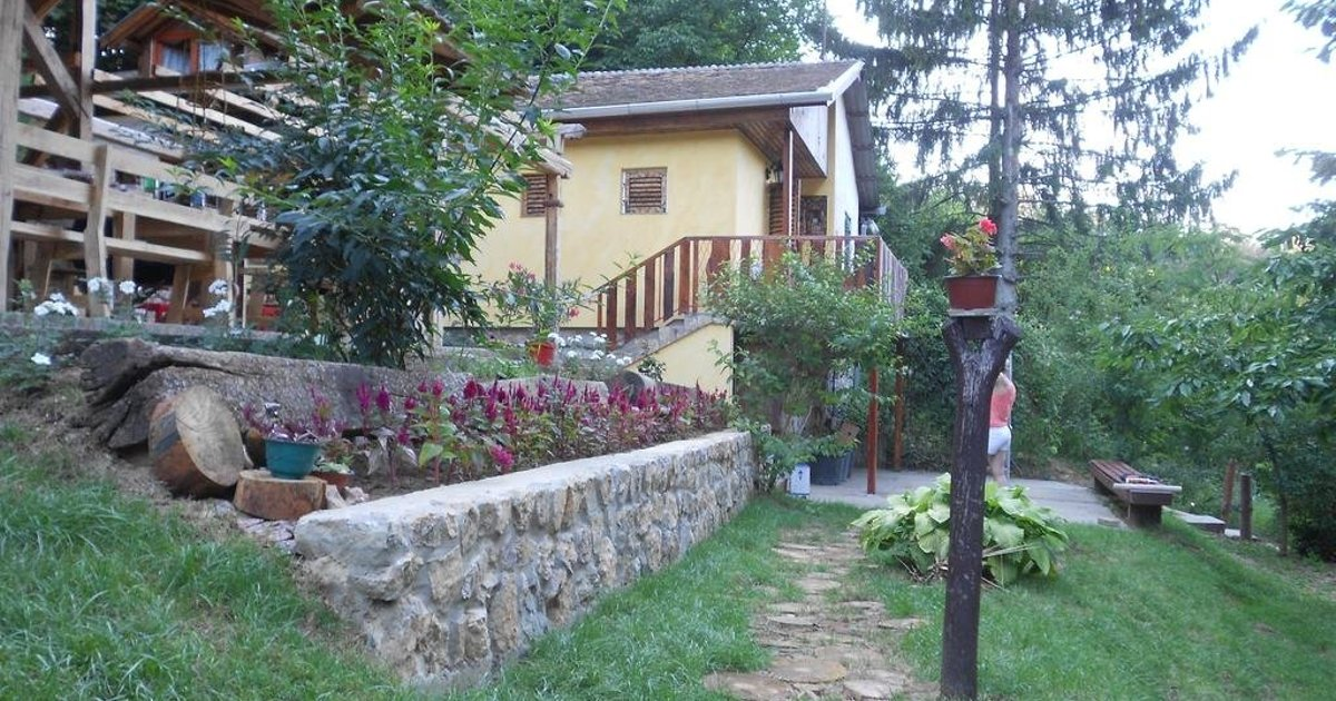 Apartments Borove Noci