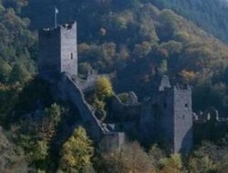Pets-friendly hotels in Manderscheid