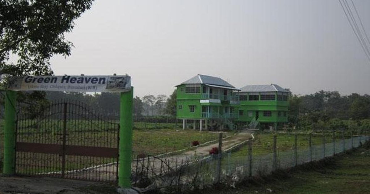Green Heaven Home Stay