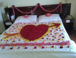 Chinnakanal hotels with swimming pool