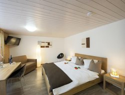 Pets-friendly hotels in Reckingen
