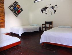 Pets-friendly hotels in Colombia