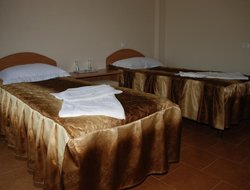 Pets-friendly hotels in Costinesti