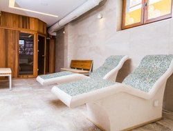Pets-friendly hotels in Serbia