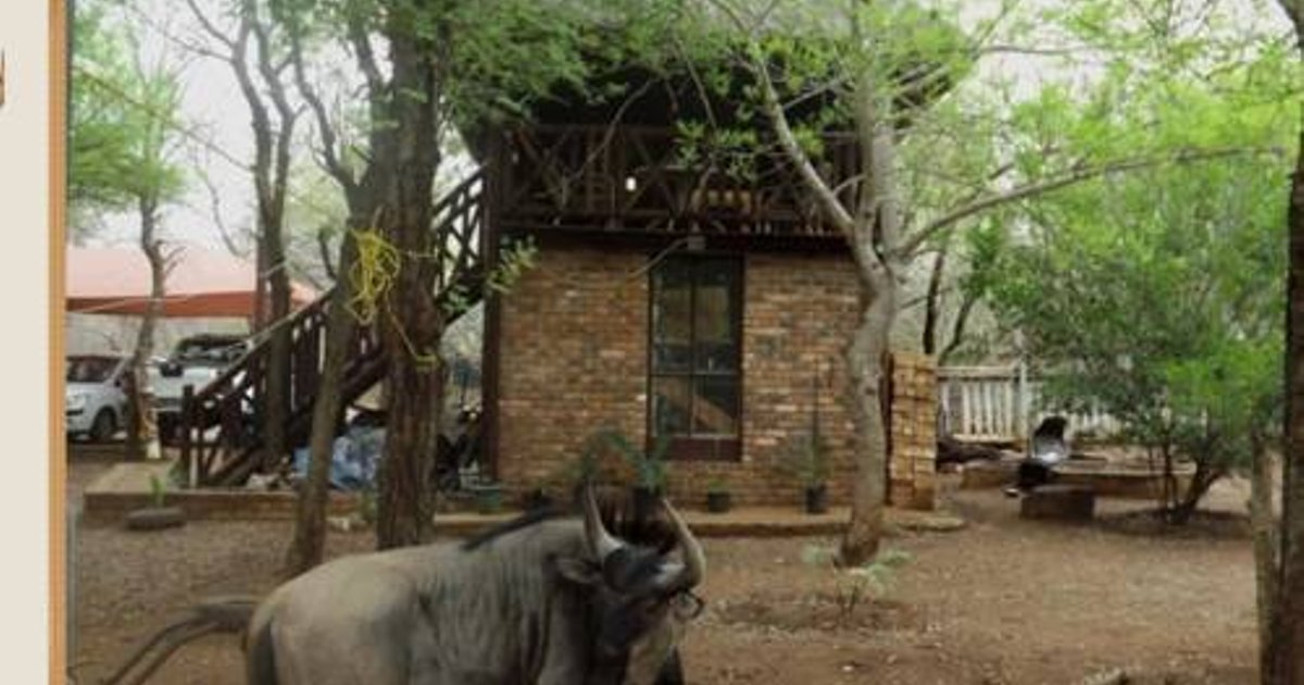 Holiday Homes in Marloth Park
