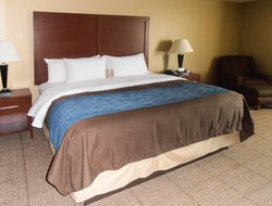 Business hotels in Plano