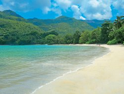 Pets-friendly hotels in Seychelles