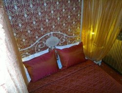 Pets-friendly hotels in Letokhori